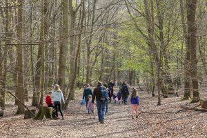 Easter Egg Hunt April 2019 © Wellesley Woodlands