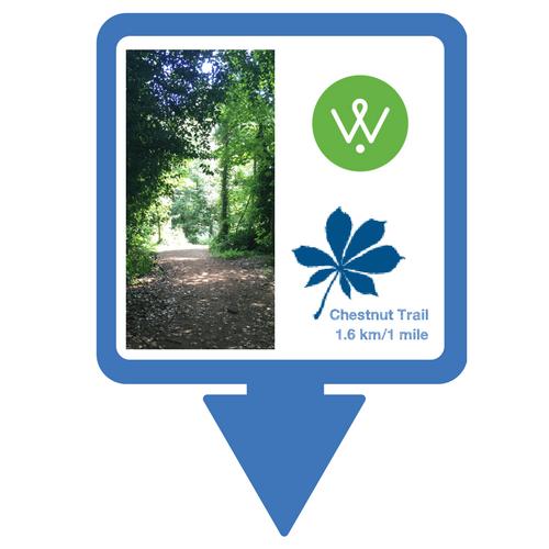 Chestnut Trail Walking Guide © Wellesley Woodlands