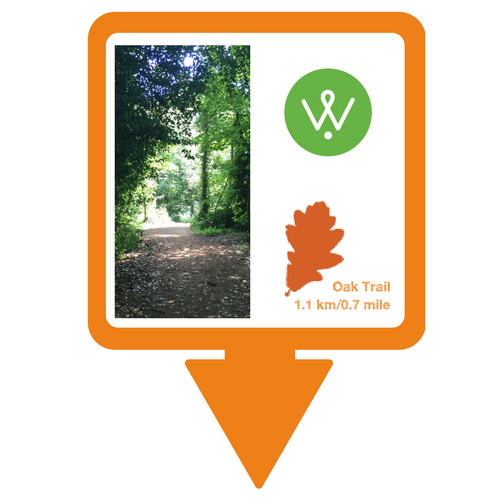 Oak Trail Walking Guide &copy: Wellesley Woodlands