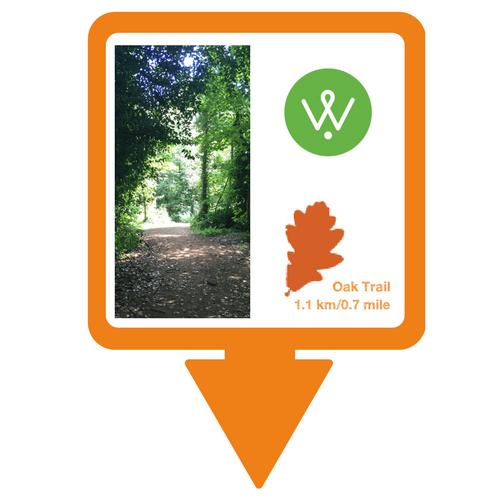 Oak Trail Walking Guide &copy: Wellesley Woodlands
