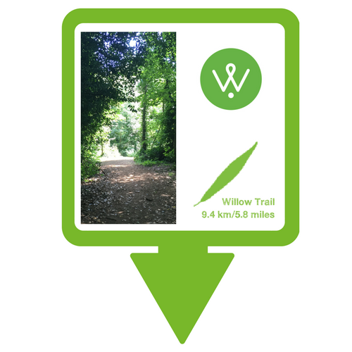 Willow Trail Walking Guide © Wellesley Woodlands