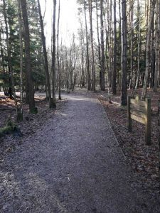 Wharf Trail - specialised wheelchair friendly footpath & copy; Wellesley Woodlands